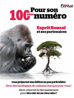 Esprit Bonsaï n°100