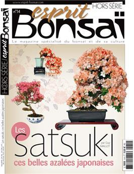 HS14 Les Satsuki, ces belles azalées japonaises
