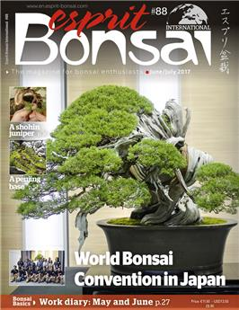 Esprit Bonsai International #88 June-July 2017