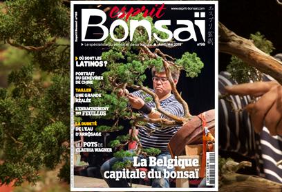 Esprit Bonsaï n°99 Avril-Mai 2019 La Belgique capitale du bonsaï