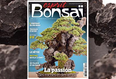 Esprit Bonsaï n°103 Décembre-Janvier 2019 La passion des roches et des arbres